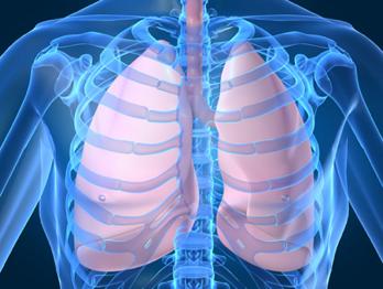 mnit astma 6