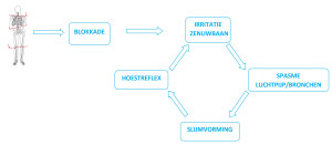 ASTMA-ASTHMA-ASTHME-ALLERGIE-ALLERGY-ECZEMA-eczema-VISC-CIRKEL-NL-2